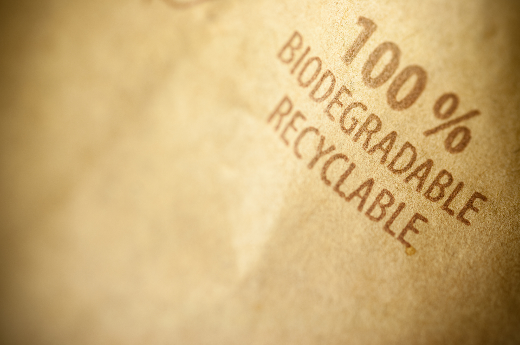 biodegradable polymer